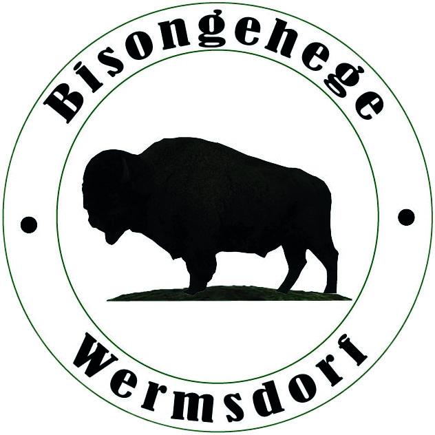Bisongehege Wermsdorf